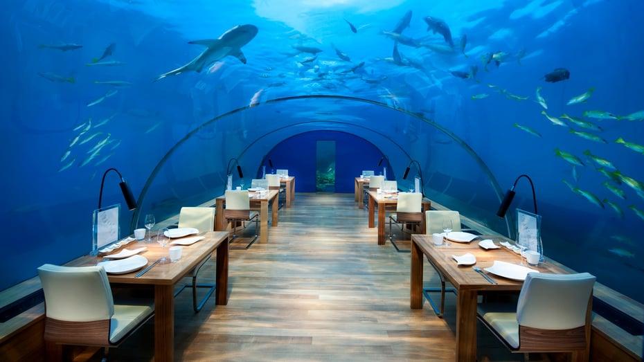 conrad_maldives_ithaa_undersea_restaurant__3_.jpg