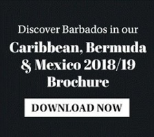 Discover Barbados - download brochure